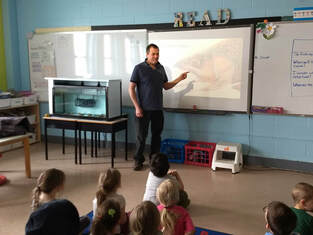 Andy presenting Fish Friends to an elementary class